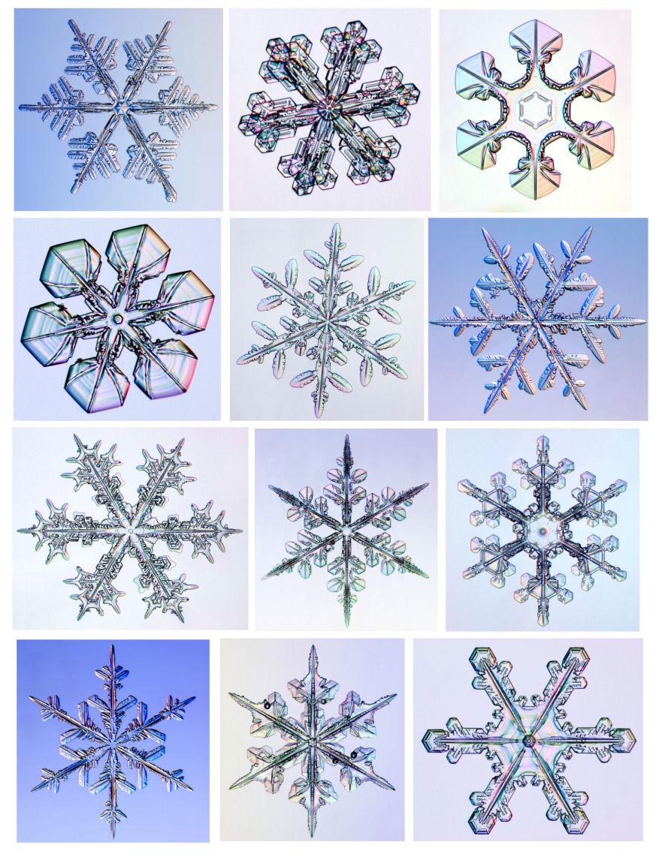 картинки форм снежинок